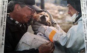 man and dog reunited