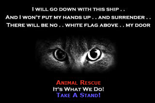 Animal Rescue, It's What We Do, Take A Stand!